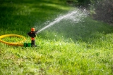 How To Water Your Grass